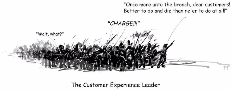Customer Experience Leader
