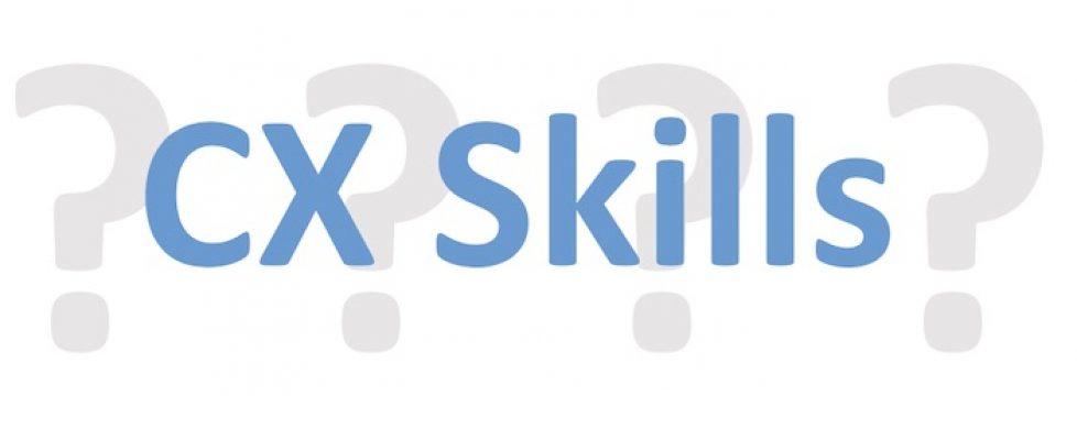 Customer Experience Skills